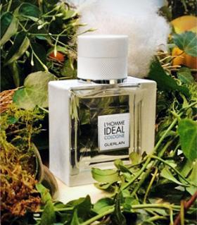 Guerlain-LHomme-Ideal-Cologne-poster